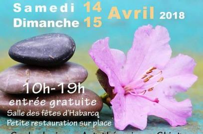 Habarcq 14 et 15 avril